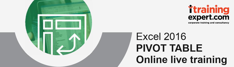 Webinar - Pivot Table Excel 2016